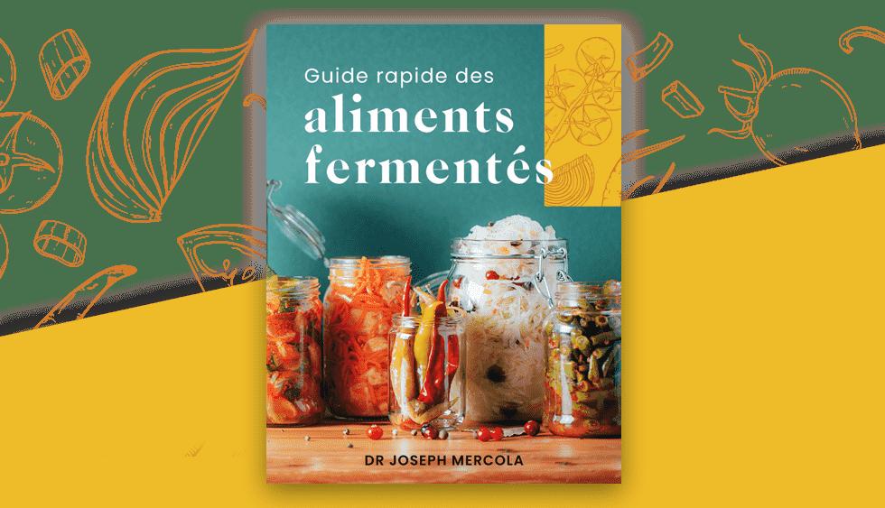 Guide rapide des aliments fermentés