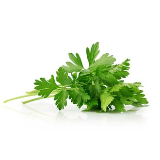 Organic Parsley Leaf