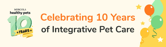 Healthypets - 10 Year Anniversary