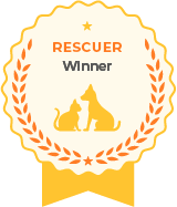 Awesome Recognition Award - Rescuer
