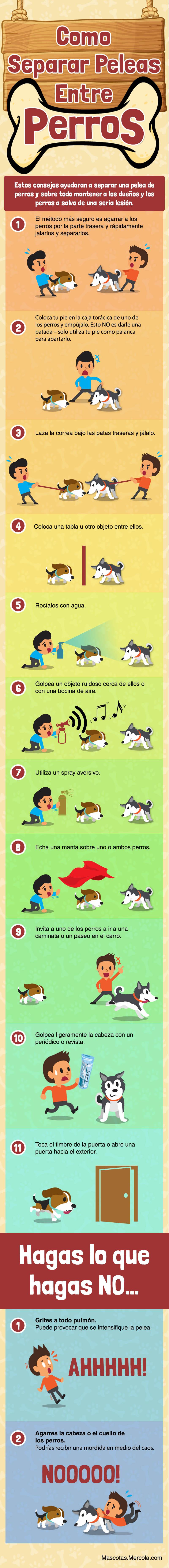 como separar peleas entre perros