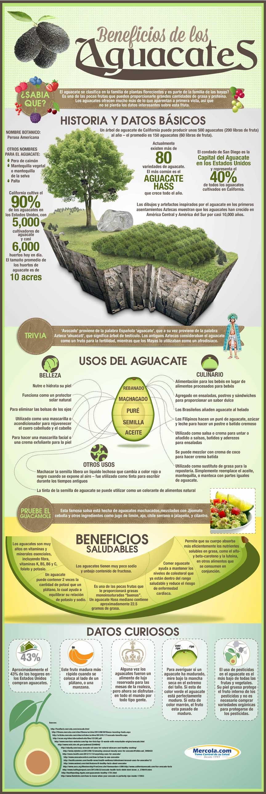 Beneficios del Aguacate