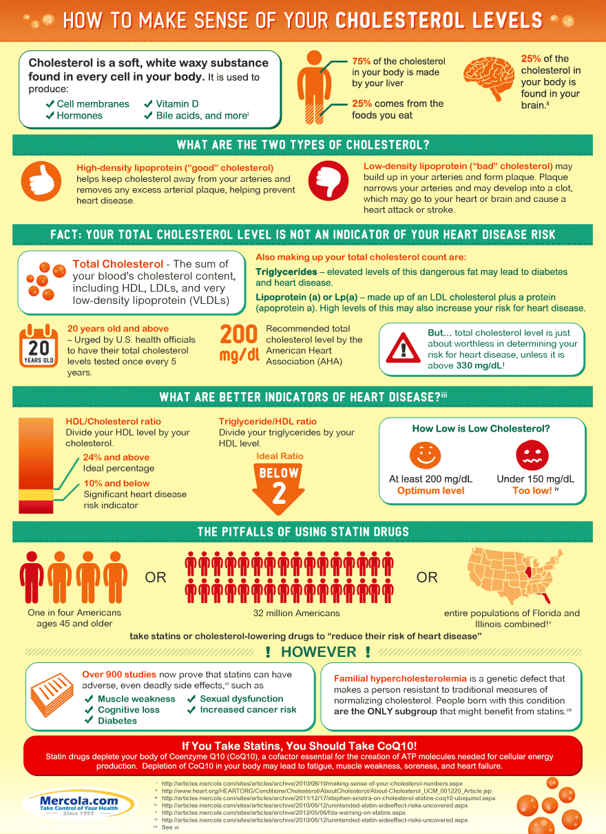 Let's Truck cholesterol levels infographic
