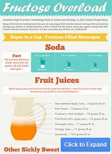 infográfico de sobrecarga de frutose
