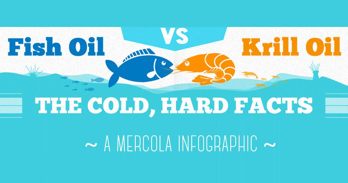 Krill oil versus fish oil infographic for Salmon oil vs fish oil