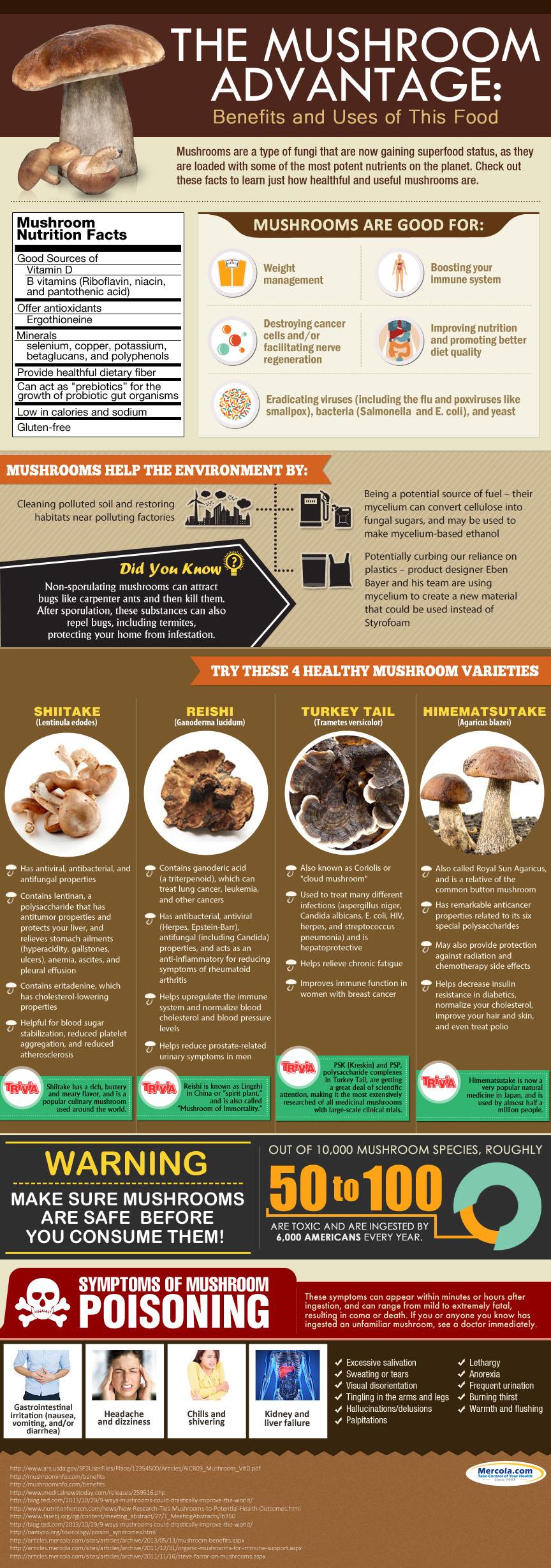 The Mushroom Advantage: Benefits and Uses of Mushroom