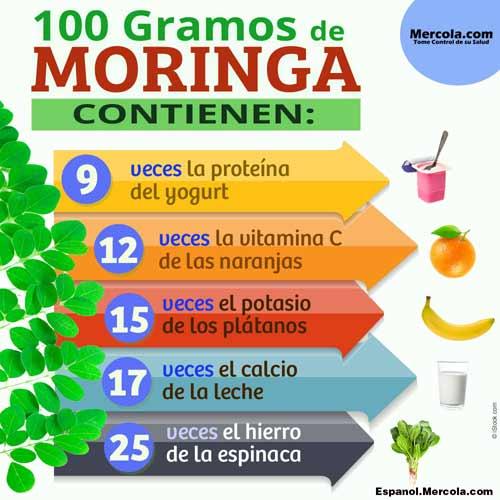 Nutricion de la Moringa