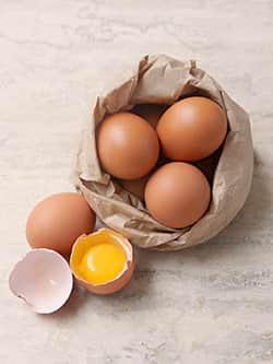 egg shell membrane