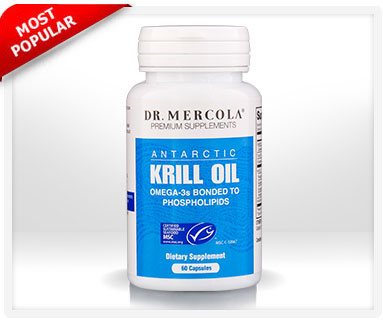 Can I Take Krill Oil Without Food