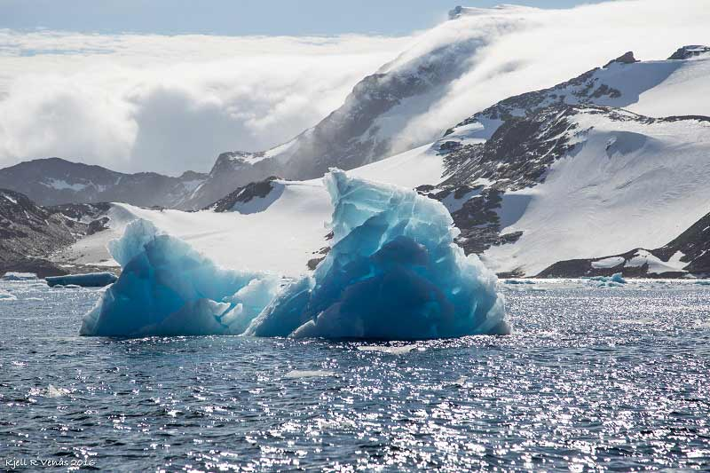 Pristine Antarctic Waters