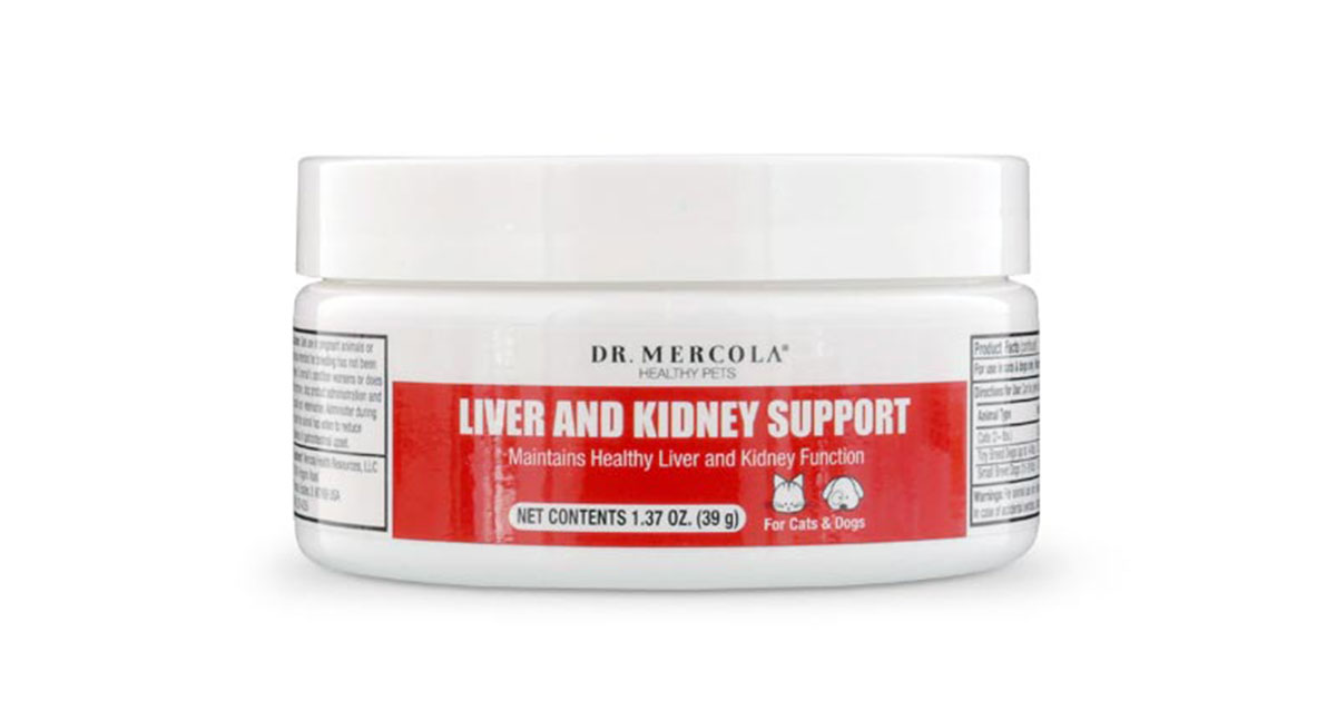 Liver And Kidney Support For Pets