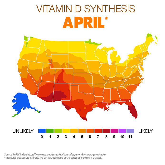 Vitamin D Synthesis - April