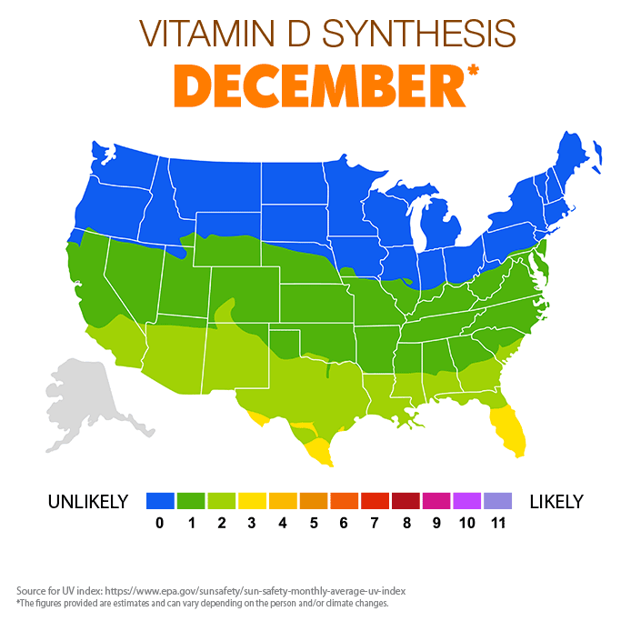 Vitamin D Synthesis - December
