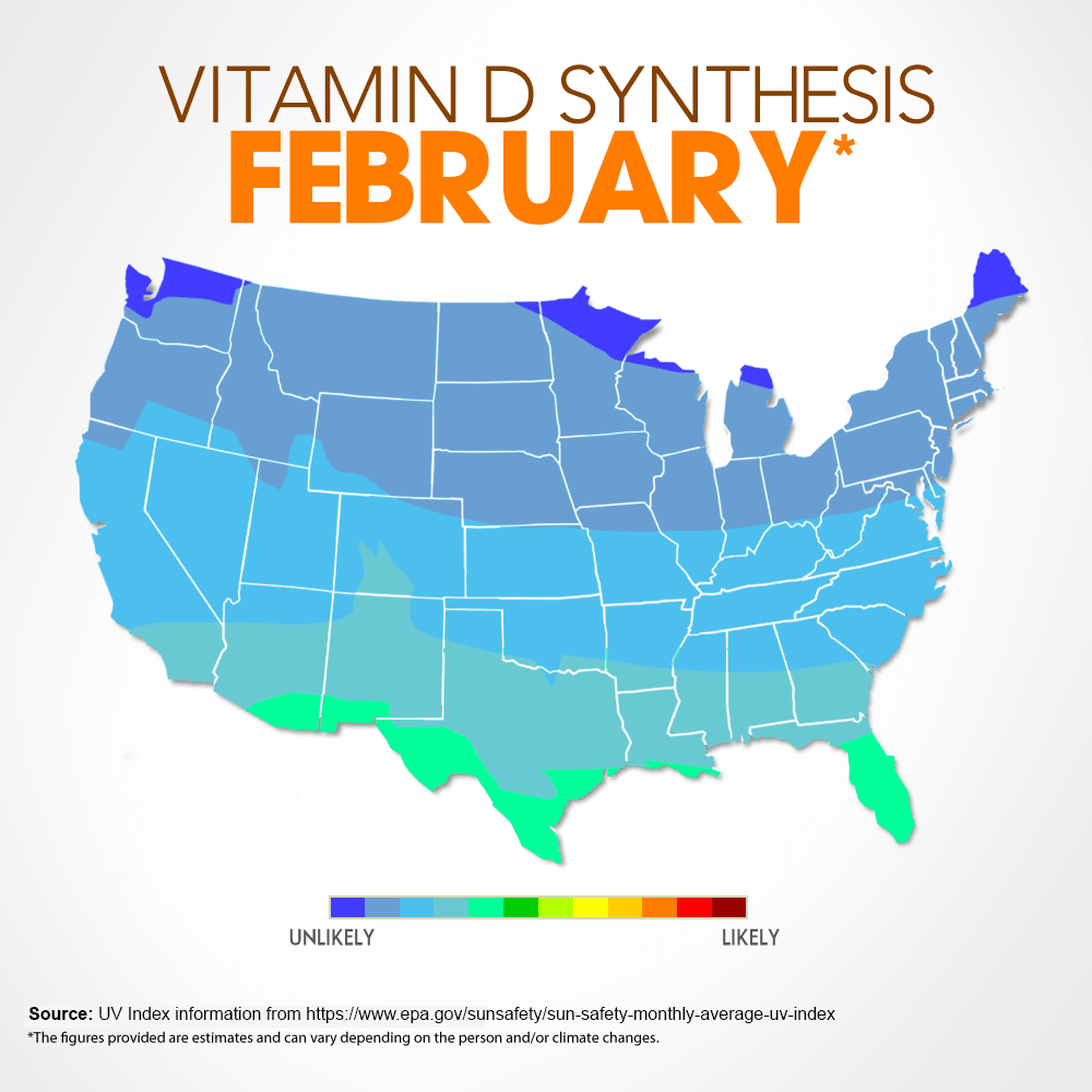 Vitamin D Synthesis - February