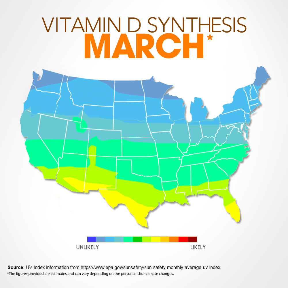 Vitamin D Synthesis - March