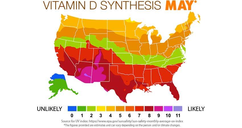 Vitamin D Synthesis May