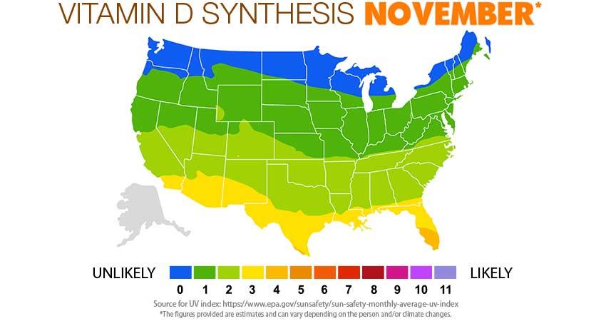 Vitamin D Synthesis november