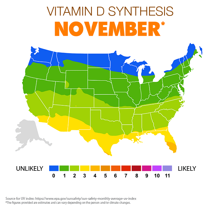 Vitamin D Synthesis - November