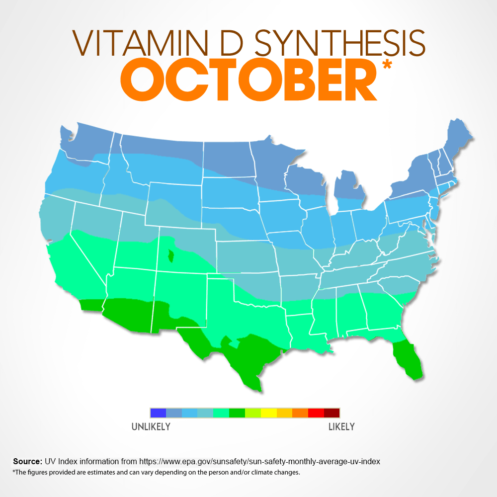 Vitamin D Synthesis - October
