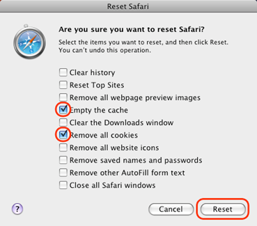 Deleting safari browsing cookies step 2