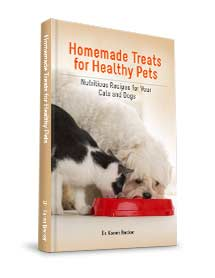 Homemade Treats for Healthy Pets eBook