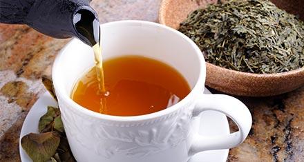 Mejores tés que debe probar