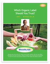 Free Report on Organic Food