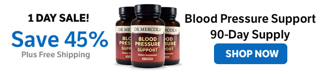 Save 45% on Blood Pressure Support 90-Day Supply