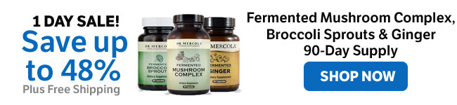 Save up to 48% on Fermented Mushroom Complex, Broccoli Sprouts & Ginger 90-day Supply