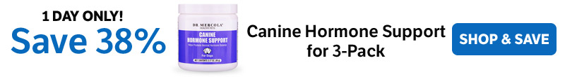 Save 38% on a Canine Hormone Support for 3-Pack