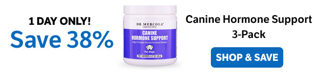 ​Save 38% on a Canine Hormone Support 3-Pack