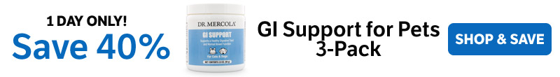 Save 40% on a GI Support for Pets 3-Pack