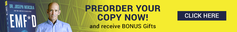 Preorder your copy now and receive bonus gifts