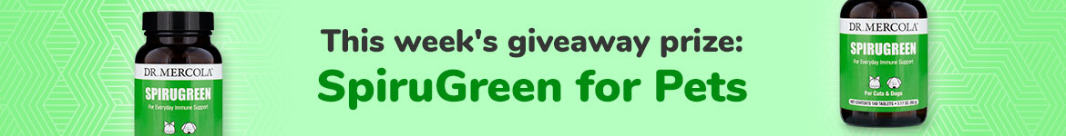 Healthypets SMS Giveaway - SpiruGreen for Pets