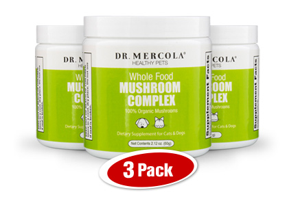 Organic Whole Food Mushroom Complex 3-Pack
