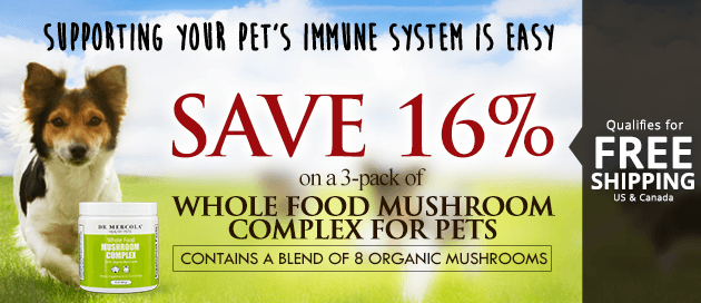 Mushroom Complex for Pets Special Offer
