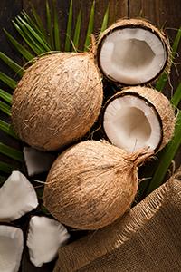 Aceite de coco o aceite MCT