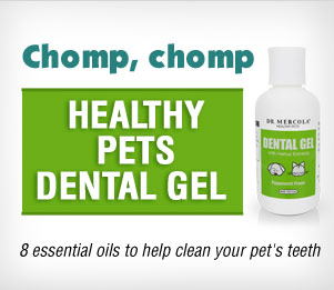Dental Gel for Pets Special Offer