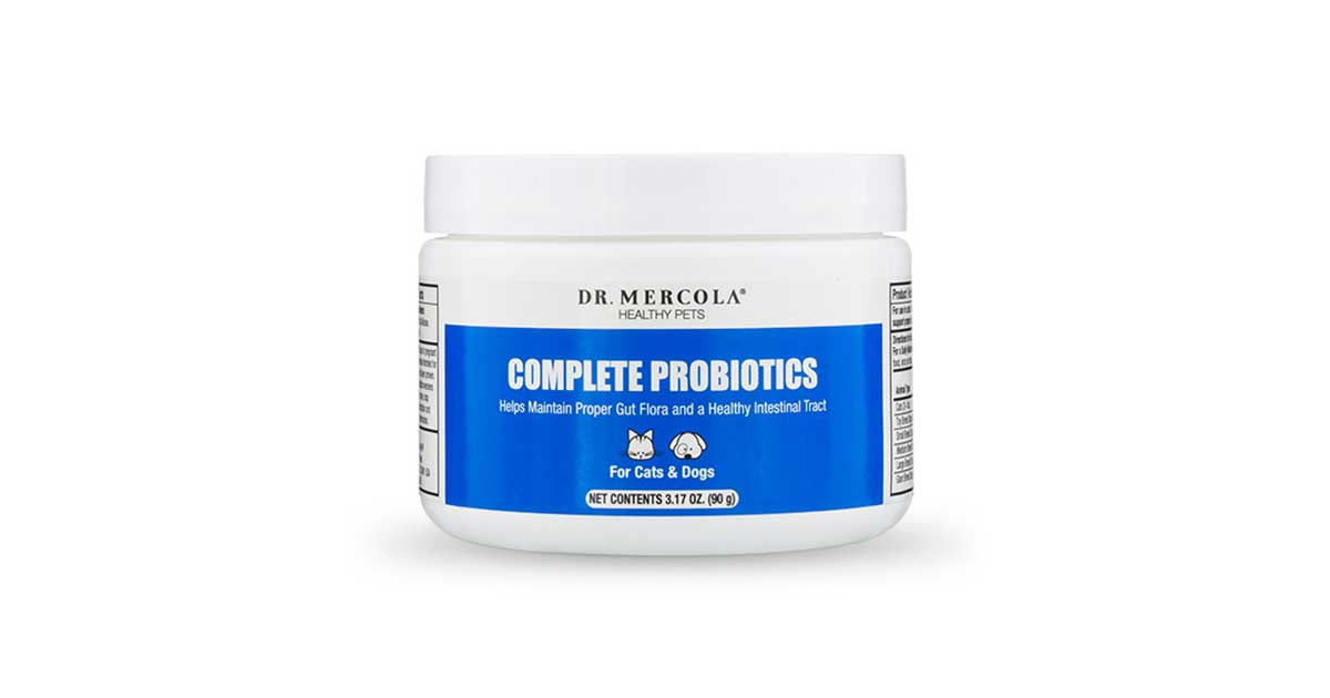 Pet Probiotics | Probiotics for Dogs & Cats