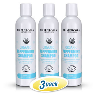 Organic Peppermint Shampoo for Dogs 3-Pack