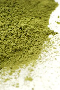 Spirulina Superfood for Pets