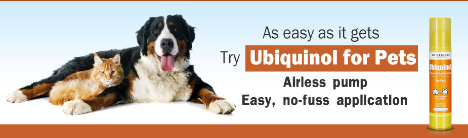 Ubiquinol for Pets Special Offer