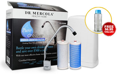 Undercounter Drinking Water Filter with Replacement Cartridges Standard Steel