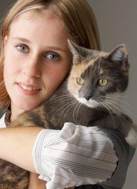 Provide Pet's Comfort
