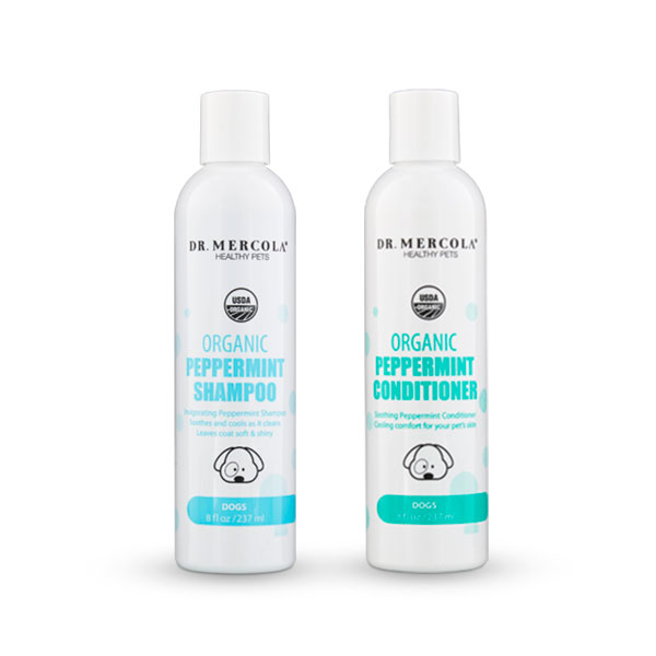 Complete Organic Dog Wash Pack