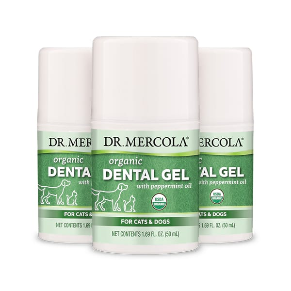 Gel Dental con Extractos Herbales Paquete de 3