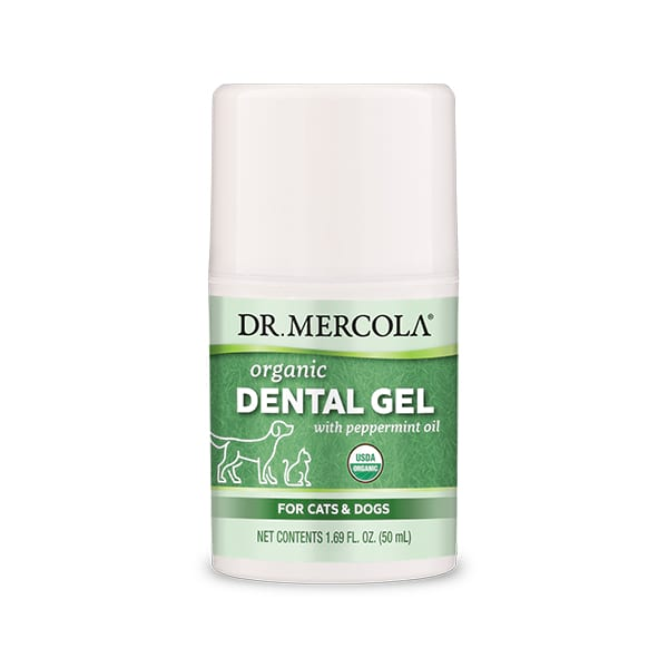 Dental Gel for Cats & Dogs (4 oz. per bottle): 1 Bottle