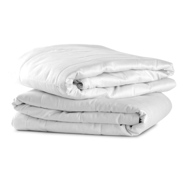 Silk-Filled Pillow Protector 2-Pack (King)