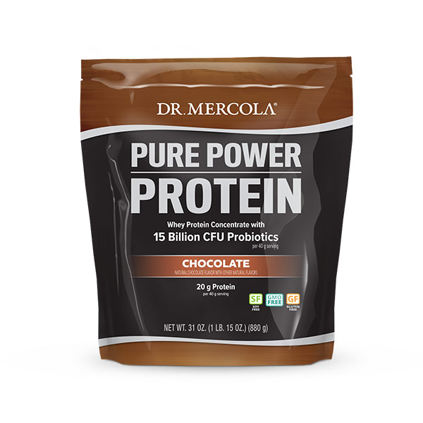 Pure Power Protein Powder - Chocolate Flavor
