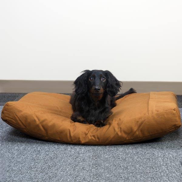 Cama Premium para Mascotas (Mediana)